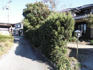 CIMG4135.JPG